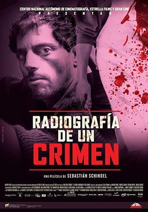 Radiografía de un crimen